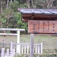 大市墓(箸墓古墳)