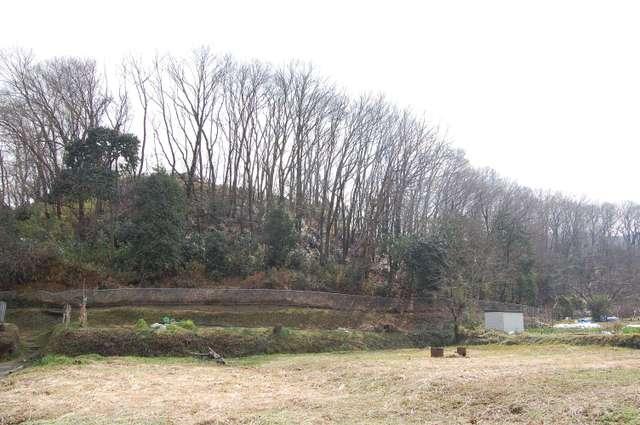 桜井・茶臼山古墳 後円部より前方部を観る