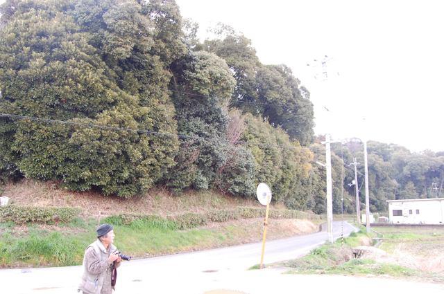 箸墓古墳前方部から後円部