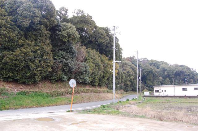 鬱蒼たる森 箸墓