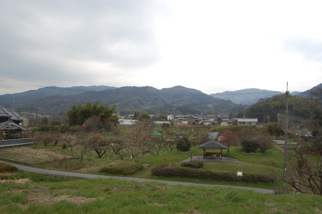 ホケノ北側