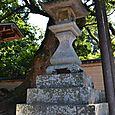 巨木と灯籠