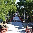 太鼓橋から楼門の方角を見る