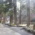 唐門への道