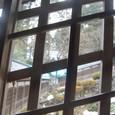 回廊からの眺め