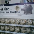 豚が好きだね