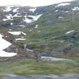 氷河が去った山肌