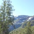 ミュルダール近くの山