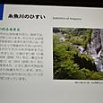 糸魚川の翡翠
