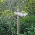 袋田滝まで0.5キロ