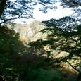紅葉の生瀬富士