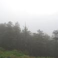 ベンガル湾からの湿った雲が吹き付ける