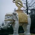六牙の白象(普賢菩薩の乗り物です)