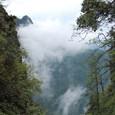 峨眉山の深山幽谷の世界