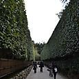 銀閣寺垣 シンメトリカルで幾何学模様