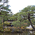 錦鏡池(きんきょうち)を配した庭