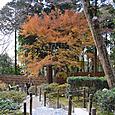 慈照寺(銀閣) 庭園