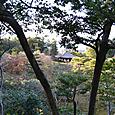 庭園と銀閣