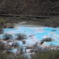 黄龍 五彩池 下流域は木が茂る