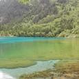 五花海 浅い湖です
