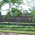 宮殿の濠と櫓