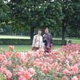 薔薇園と親子