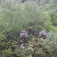 断崖絶壁の山道を行く