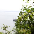ハロン湾鍾乳洞(ティエンクン)