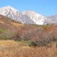 八方紅葉と白馬三山
