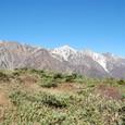 左から、天狗頭、鑓ヶ岳、杓子岳、白馬岳