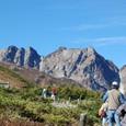 左端は唐松岳
