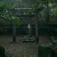 三柱鳥居 元糺の池
