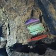 発掘時の俑には色彩が残っていた