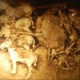 1号銅車馬(立車)発掘時写真