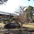 巨石のある庭園