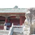 狛犬と報恩寺南大門