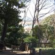 多摩川を見下ろせます