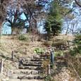 宝莱山古墳に登る
