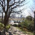宝莱山古墳より多摩川を見下ろす