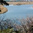 多摩川は大河です