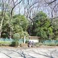 亀甲山(かめのこやま)古墳 右が後円部