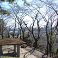 亀甲山古墳より多摩川を見る