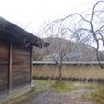 武家屋敷裏庭