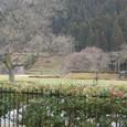 朝倉館の唐門が見えます