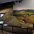 5~6世紀頃の三島の古墳築造風景