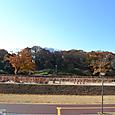 今城塚古墳 北側内堤の埴輪祭祀場風景