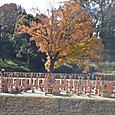 埴輪祭祀場 2区と3区の埴輪群