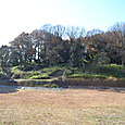 今城塚古墳後円部風景 慶長伏見地震で崩壊した