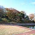 今城塚古墳前方部を眺める