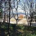 墳丘より北側の内堤の埴輪祭祀場を眺める